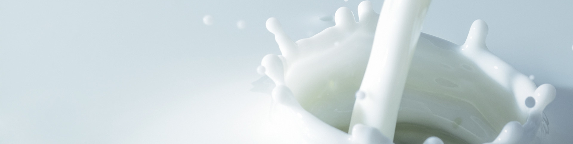 Liquid Dairy Products